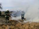 24.03.2012 pożar traw Zdany