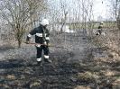 28.03.2012 Pożar traw Zbuczyn